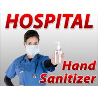 Hand Sanitizer - Anisha K (24 Bottles per Case)