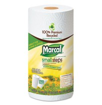 Paper Towel Rolls Paper Towel Rolls - Aborbent, virtually lint-free, two-ply paper towels.TOWEL,MAXI