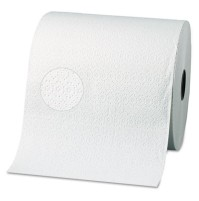 Paper Towel Roll Paper Towel Roll - Georgia Pacific Nonperforated Paper Towel RollsTWL,RL,2PLY,WHI,3