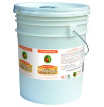 Dishmate Manual Dishwashing Liquid, Apricot | 5 gal pail - (1/Pail)
